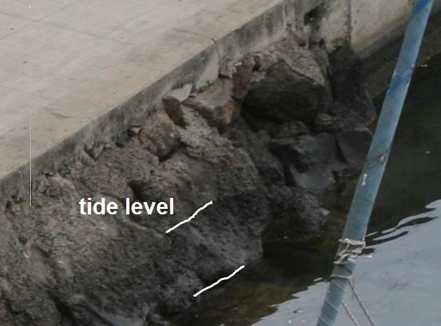 tsunami_stage_3